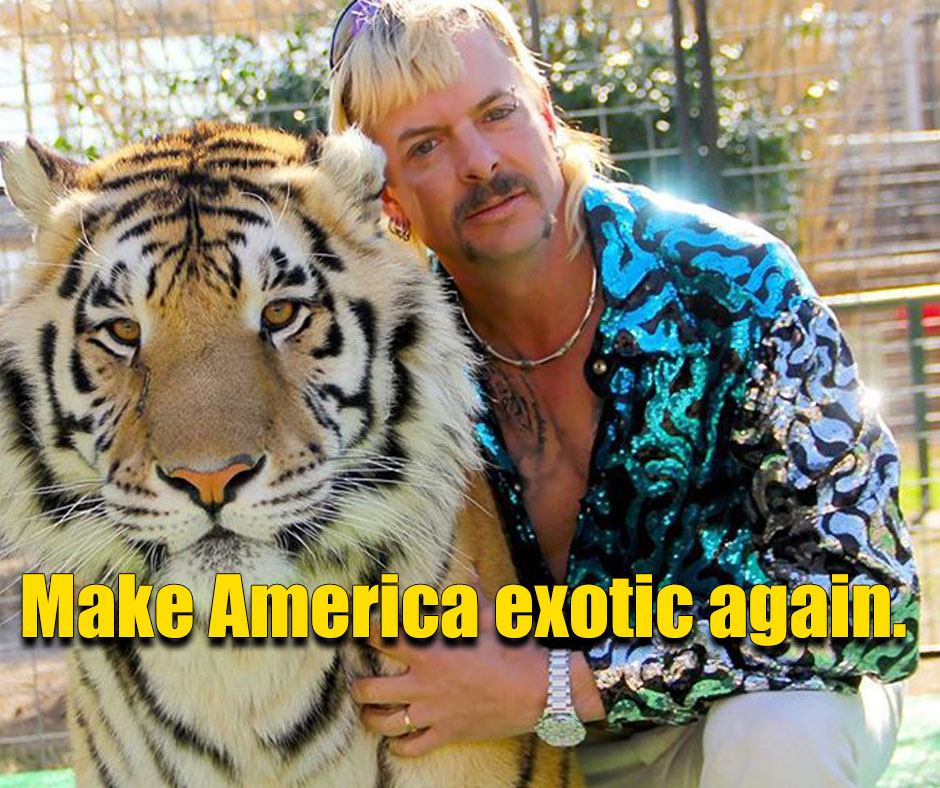 Make America exotic again quote tiger king