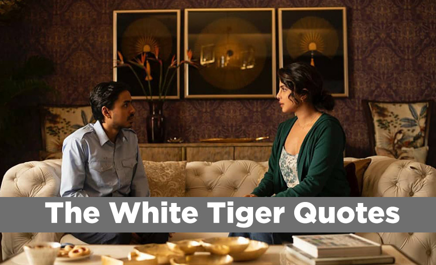 The White Tiger quotes, the Netflix Quotes