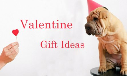 Gift Ideas for valentine day